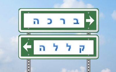 PARSHAT RE'EH: RAV KOOK ON 'HOW TO BE HAPPY'