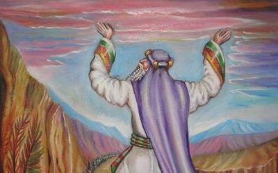 RAV KOOK ON PARSHAT NOACH:  HOW TO BE A COMPLETE TZADIK IN OUR GENERATION